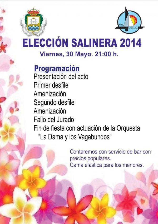 ELECCIÓN SALINERA 2014